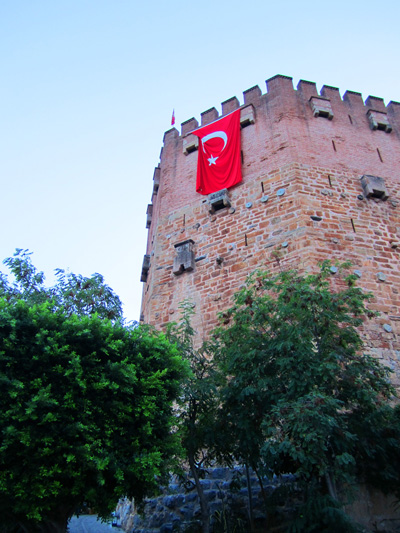 turkey (7)