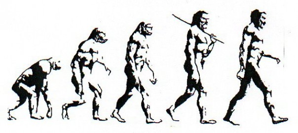 the theory of evolution does not apply to modern human beings