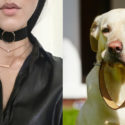 Do Girls Who Wear Chokers Want To Be Treated Like Dogs?