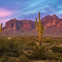 Babylon Road #15 – Yuma, St. Anthony's Monastery, Phoenix