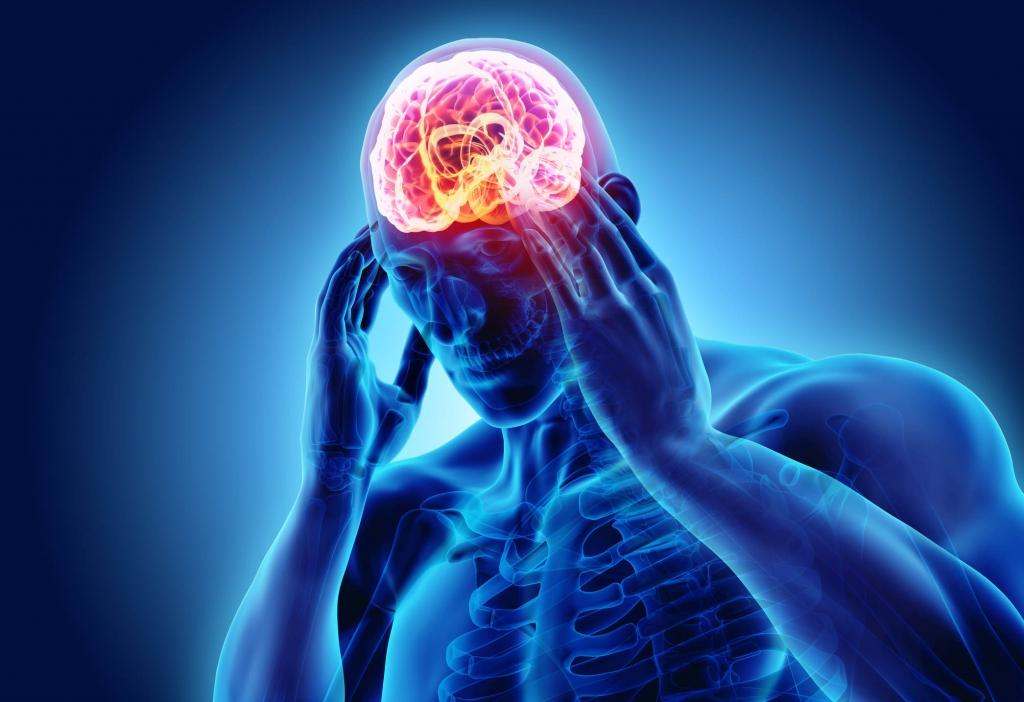 big-brain-1024x702.jpg