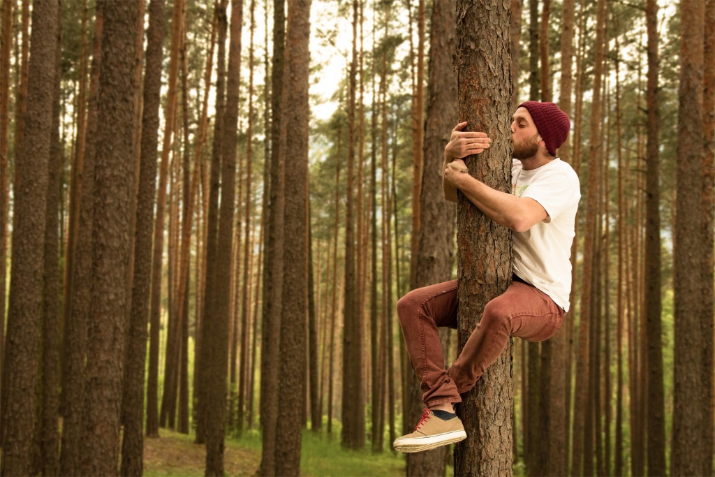 tree-hugger-1024x683.jpg