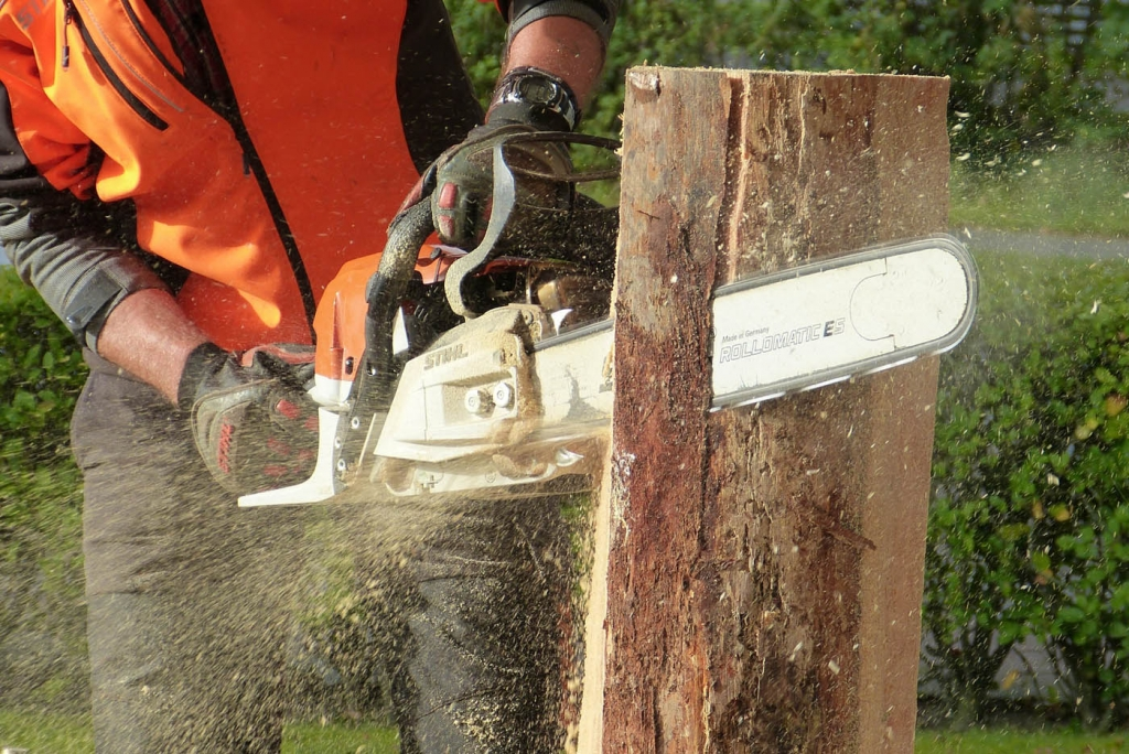 male-chainsaw-1024x684.jpg