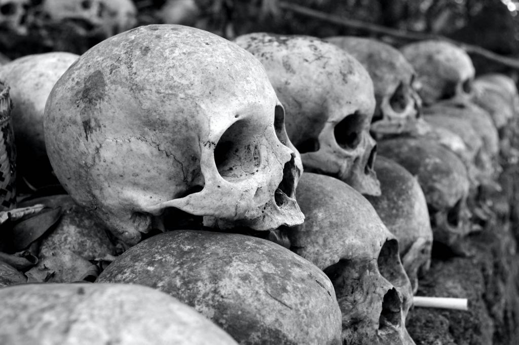 skulls-1024x681.jpg