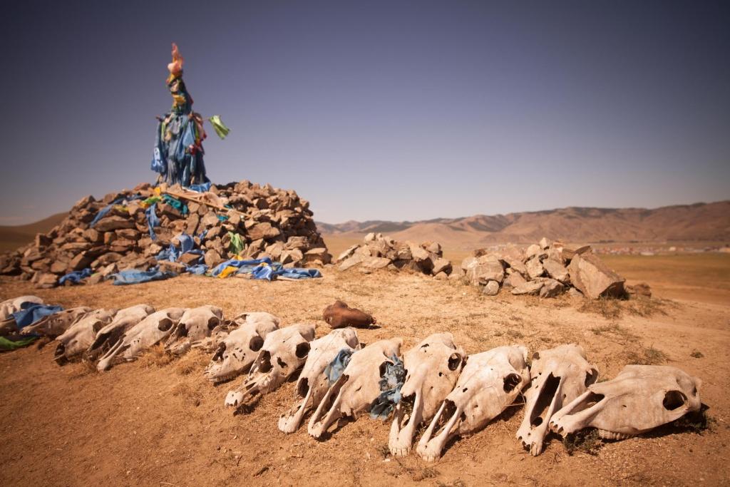 barbarian-skulls-1024x683.jpg